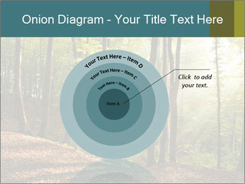 Backlight In Forest PowerPoint Template - Slide 61