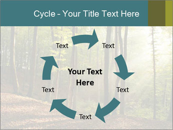 Backlight In Forest PowerPoint Template - Slide 62