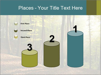 Backlight In Forest PowerPoint Template - Slide 65