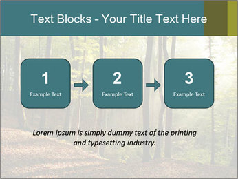 Backlight In Forest PowerPoint Template - Slide 71