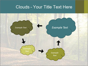 Backlight In Forest PowerPoint Template - Slide 72