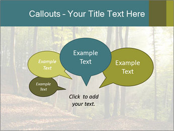 Backlight In Forest PowerPoint Template - Slide 73