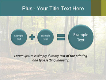 Backlight In Forest PowerPoint Template - Slide 75