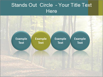 Backlight In Forest PowerPoint Template - Slide 76