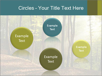 Backlight In Forest PowerPoint Template - Slide 77