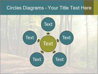 Backlight In Forest PowerPoint Template - Slide 78