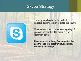 Backlight In Forest PowerPoint Template - Slide 8