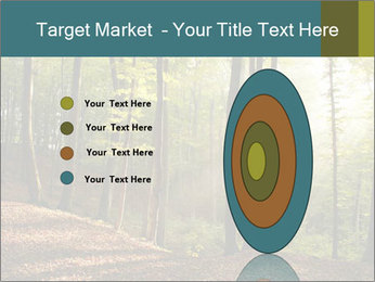 Backlight In Forest PowerPoint Template - Slide 84
