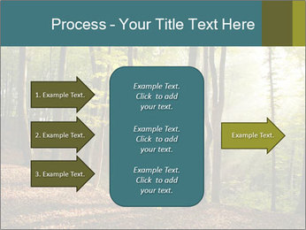 Backlight In Forest PowerPoint Template - Slide 85