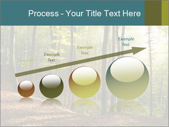 Backlight In Forest PowerPoint Template - Slide 87