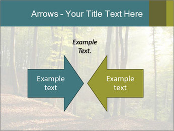 Backlight In Forest PowerPoint Template - Slide 90