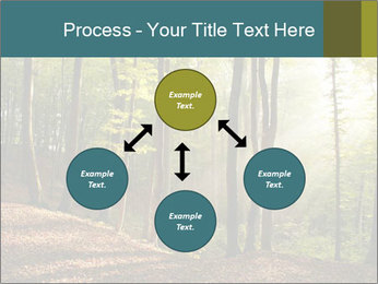 Backlight In Forest PowerPoint Template - Slide 91