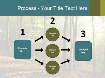 Backlight In Forest PowerPoint Template - Slide 92