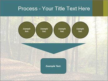 Backlight In Forest PowerPoint Template - Slide 93