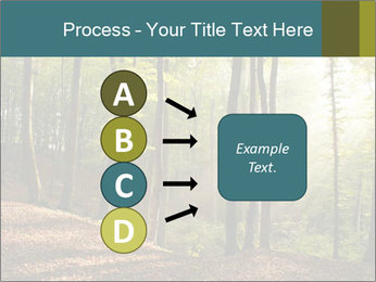 Backlight In Forest PowerPoint Template - Slide 94