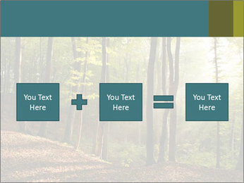 Backlight In Forest PowerPoint Template - Slide 95