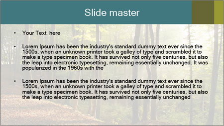 Backlight In Forest PowerPoint Template - Slide 2