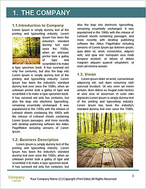 0000090148 Word Template - Page 3
