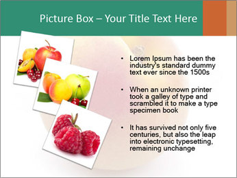 Fresh Apricot PowerPoint Templates - Slide 17
