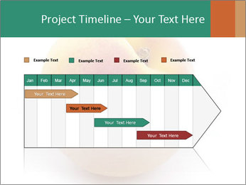 Fresh Apricot PowerPoint Templates - Slide 25