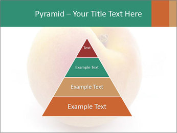 Fresh Apricot PowerPoint Templates - Slide 30