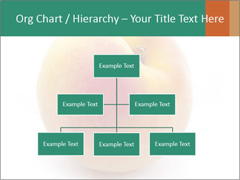 Fresh Apricot PowerPoint Templates - Slide 66