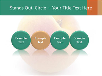 Fresh Apricot PowerPoint Templates - Slide 76