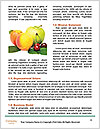 0000090152 Word Template - Page 4
