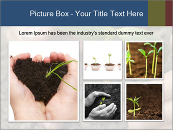 Green sprout in child hand PowerPoint Template - Slide 19