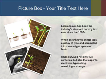 Green sprout in child hand PowerPoint Template - Slide 23