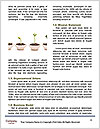 0000090163 Word Template - Page 4