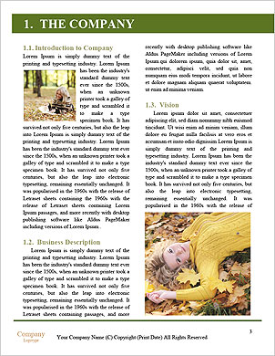 0000090164 Word Template - Page 3