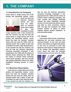 0000090166 Word Template - Page 3