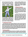 0000090178 Word Template - Page 4