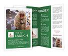 0000090179 Brochure Templates