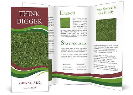 0000090182 Brochure Template