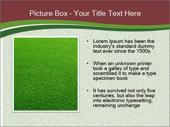 Grass On Baseball Field PowerPoint Template - Slide 13