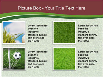 Grass On Baseball Field PowerPoint Template - Slide 14