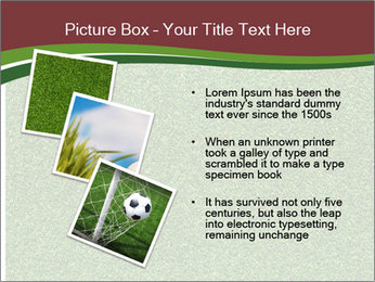 Grass On Baseball Field PowerPoint Template - Slide 17