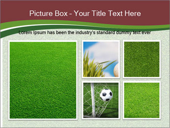 Grass On Baseball Field PowerPoint Templates - Slide 19