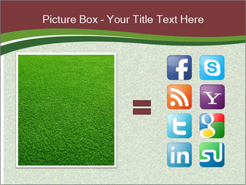 Grass On Baseball Field PowerPoint Template - Slide 21