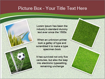 Grass On Baseball Field PowerPoint Template - Slide 24