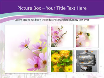 Pink Flower Blossom PowerPoint Templates - Slide 19