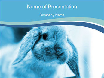 Blue Rabbit PowerPoint Template - Slide 1