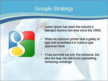 Blue Rabbit PowerPoint Templates - Slide 10