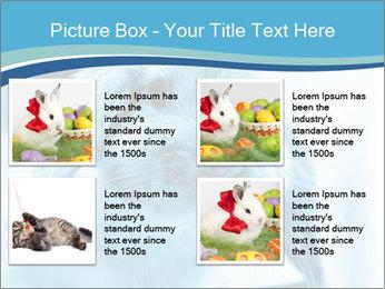 Blue Rabbit PowerPoint Templates - Slide 14