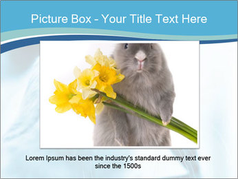 Blue Rabbit PowerPoint Template - Slide 15