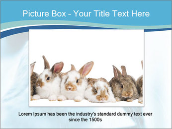 Blue Rabbit PowerPoint Templates - Slide 16