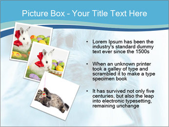 Blue Rabbit PowerPoint Template - Slide 17