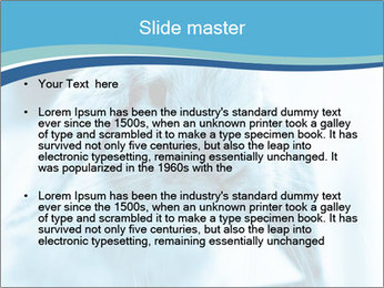 Blue Rabbit PowerPoint Templates - Slide 2